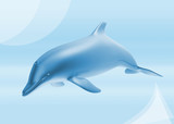 dolphin background poster