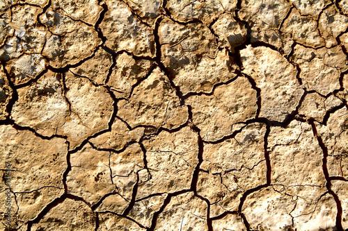 Deurstickers Droogte dry land