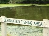 designated fishing area sign poster