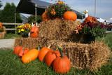 a pumpkin display at a fall festival poster