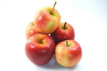 äpfel, elster lose
