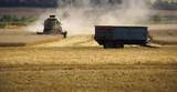 combined harvester cornfield harvesting bidford on poster