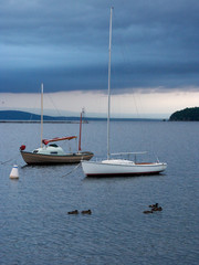 moored before the storm