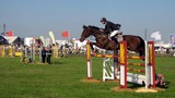 horse & rider competing in a showjumping event. poster