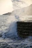 england dorset lyme regis harbour jurassic coast t poster