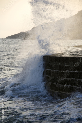 england dorset lyme regis harbour jurassic coast t