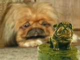 dog and statuette poster