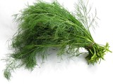dill leaves bunch poster