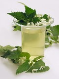 dead-nettle herb and tea poster