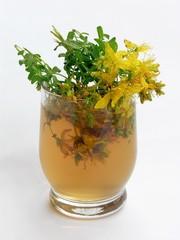 hypericum herb tea