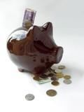 brown ceramic pig-money-box poster