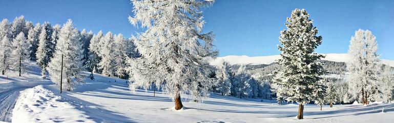 schnee schnee schnee