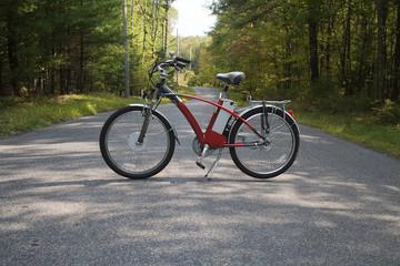 bike in the road ii