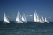 start of a sailing regatta - 1375692