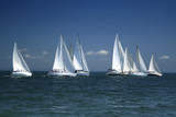 start of a sailing regatta