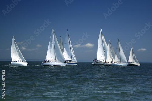 Foto op Aluminium Zeilen start of a sailing regatta