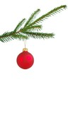 christmas tree decoration poster