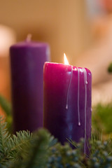 candles - purple