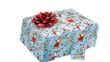 gift box. christmas gift/present