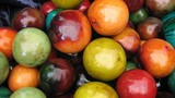 dry african apples/painted for decoration poster
