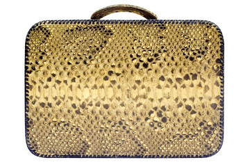 snakeskin bag w/ path (side view)
