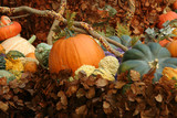 pumpkins and foliage poster