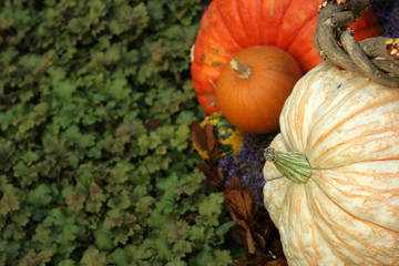 pumpkins and greenery