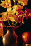 Fototapety orchids and apple