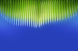 palm fringe poster