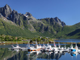 scenic yacht marina in norway poster