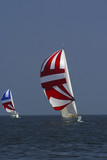 sailing. the winner and losed. poster