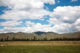 west sayan mountains poster
