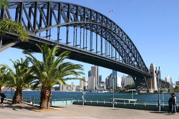 sydney city, harbour and sydney harbour bridge