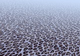 leopard fur poster