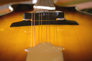 mandolin sunburst