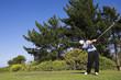 golf #43