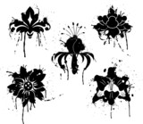 grunge paint flower, element for design poster