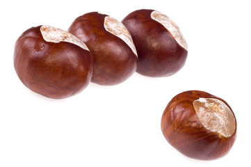 chestnuts. 3 + 1