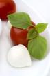 tomaten und mozzarella mit basilkum