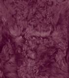 soft fur poster