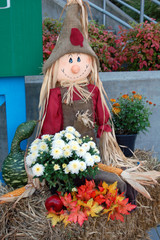 scarecrow among flowers