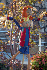 scarecrow in tree