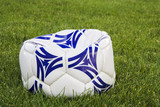 flat white and blue soccer ball on grass poster