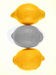 3 citrons,2 jaunes,1 noir et blanc