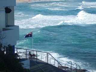 bondi lifeguard and flag