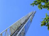 extended ladder poster