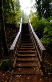 wooden stairs poster