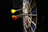dart board with three darts poster