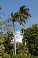bermuda traditional church & palm trees