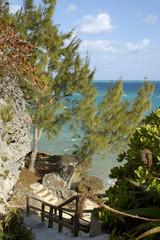 bermuda's rocky coast 1